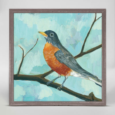 Robin With Red Belly Mini Framed Canvas 6X6