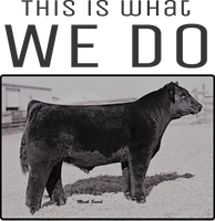 Cow- This is what we do