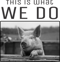 Pig- This is what we do