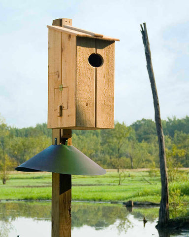 Nestbox- Large Bird