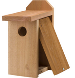 Nestbox- Small Bird