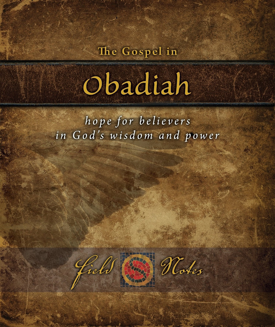 The Gospel in Obadiah: Hope for believers in God's wisdom and power