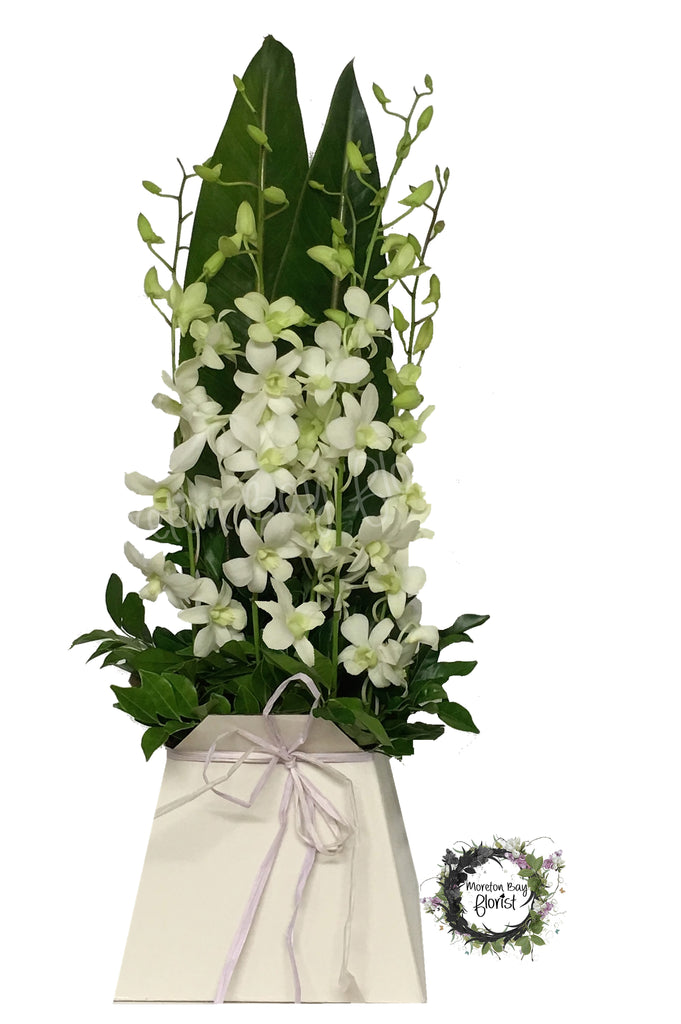 White Orchid Flower Arrangement