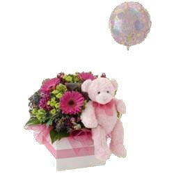Baby girl flowers with teddy and balloon