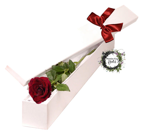 Single long stemmed rose in presentation box
