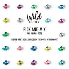 Biodegradable Glitter Large Pick and Mix 5 pack - Wild Glitter Bioglitter® Multipack