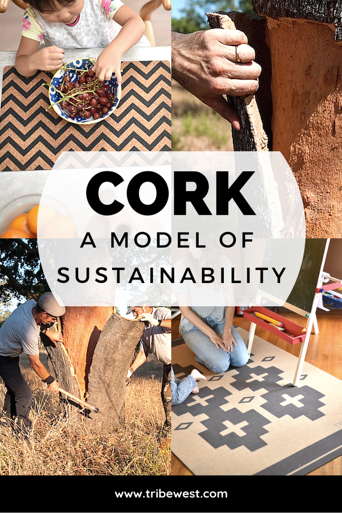 Tribe West Cork Blog A Model Of Sustainability Pinterest