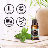 Innoo Tech True Peppermint Essential Oil