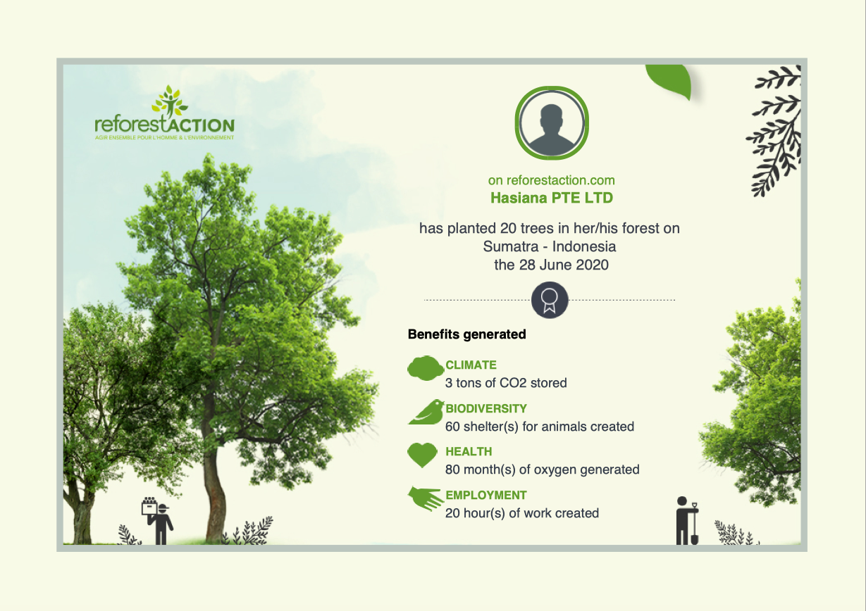 Tree planting by Hasiana PTE LTD