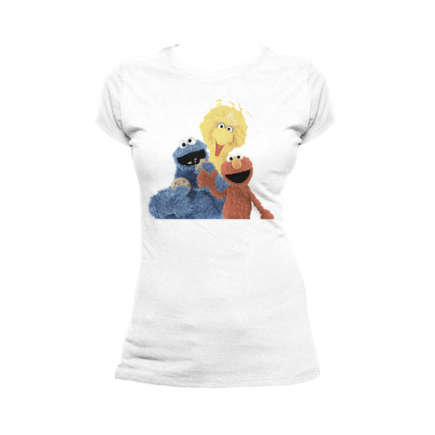 Sesame Street Group Photo Wave Official Women's T-shirt (White) - Urban Species Ladies Short Sleeved T-Shirt