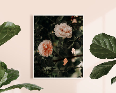 Feminist Art Print- Roses Flowers Nature Illustration Female Nude Minimalist Modern Digital Illustration Pink Feminist Art Print Wall Art