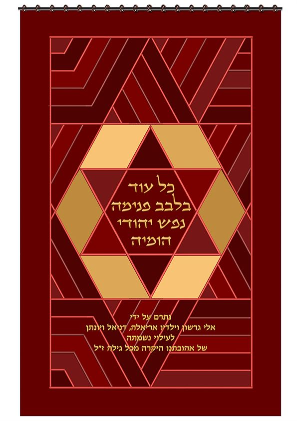 Ark Curtain - Modern Star Magen David
