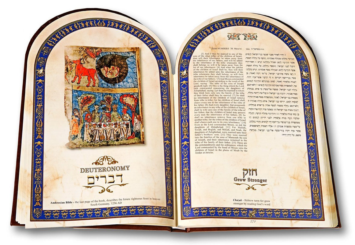 Illuminated Torah - English Hebrew Leather
