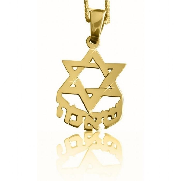 Personal Star Of David Name Pendant 14 inch Chain (35 cm) 14Kt Yellow Gold