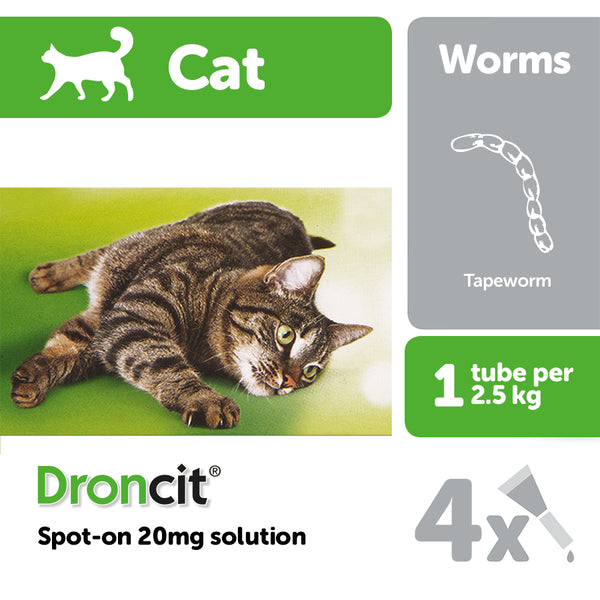 Droncit Spot On Cat 20mg - 4 Pipettes