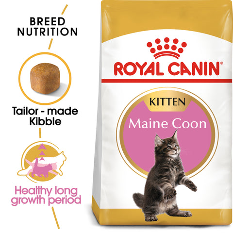 Royal Canin Maine Coon Kitten Dry Cat Food 10kg