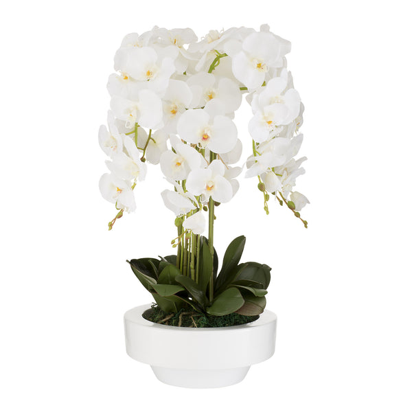 Potted Artificial Orchid Flowers in White