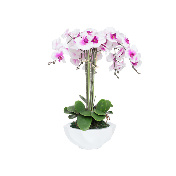 Potted Artificial Orchid Flowers in White Purple