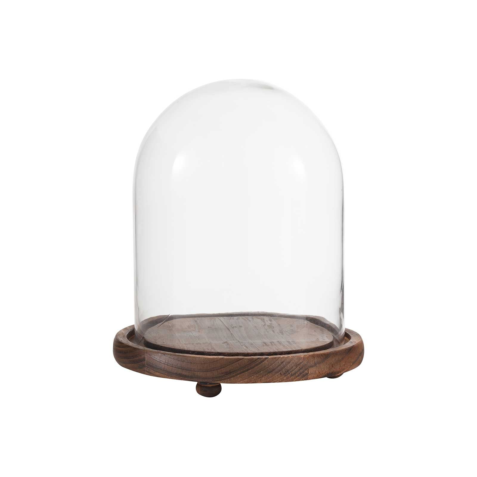 Small Glass Dome Bell Jar by Aufora