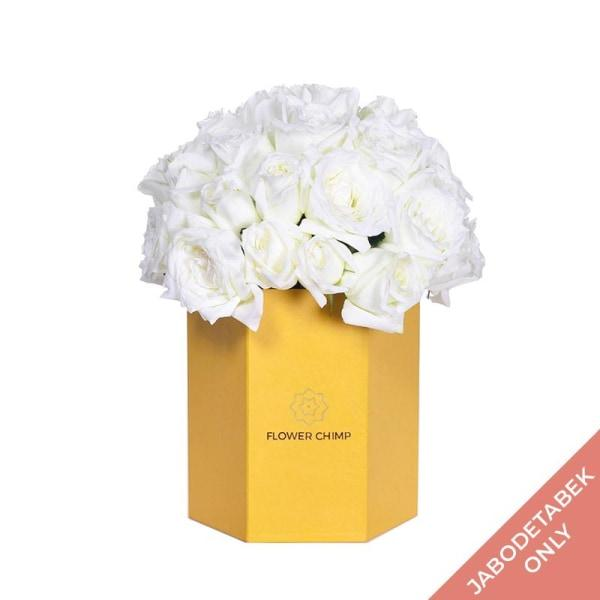 Boxed Bloom - Snow Flowers_Box