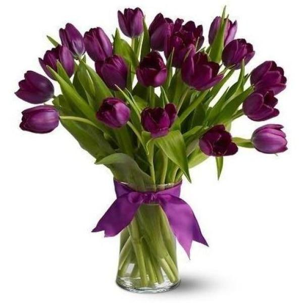 Purple Tulips In A Vase Flowers_Potted
