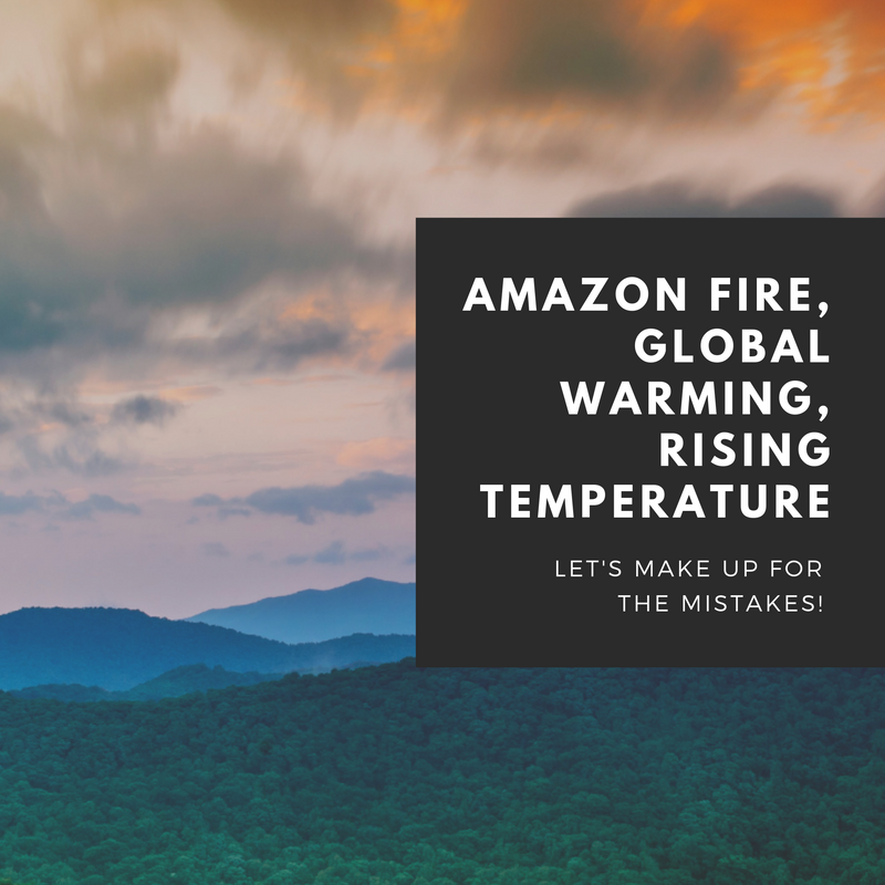 Amazon Fire, Global Warming, Rising Temperature - Let's make up for the mistakes!