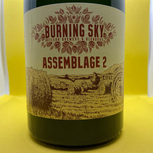 Burning Sky Assemblage 2