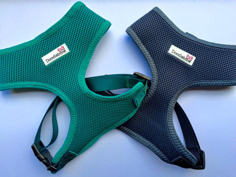 Airmesh Dog Harness XS - The Dog Hoose