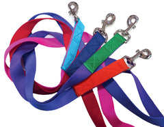 Paw Stars Mylon Dog Leashes