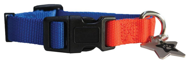 Blue & Orange nylon collar