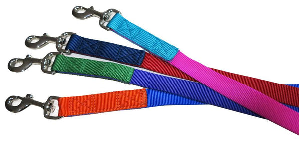 Purple & Green nylon leash