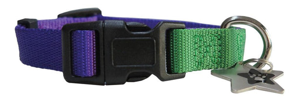 Purple & Green nylon collar