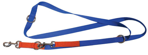 Red & Blue nylon training leash