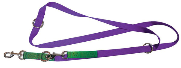 Purple & Green nylon training leash