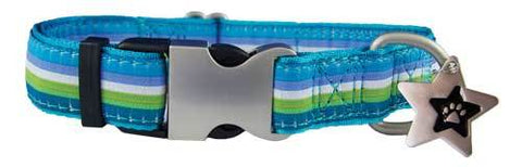 Archie Ribbon Collar