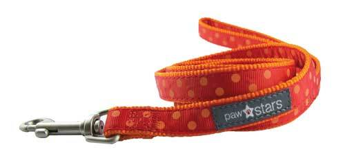 Indie ribbon puppy leash