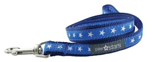Rocky II ribbon puppy leash