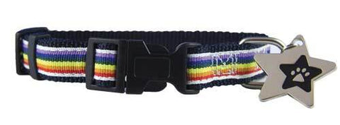 Rainbow ribbon puppy collar