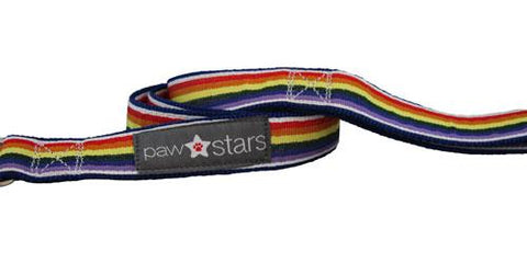 Rainbow Ribbon Leash