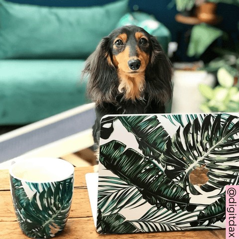 Coconut Lane Palm Macbook Case with dog