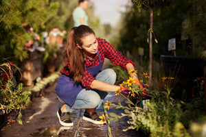 10 Tips to Beautify Your Garden