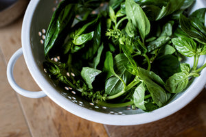 5 Recipes with Basil
