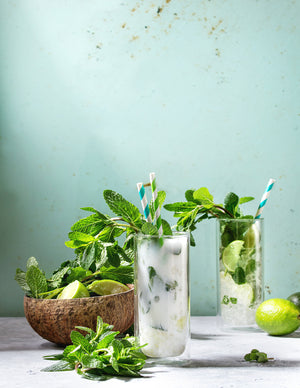 Best Herbs To Grow for Cocktails