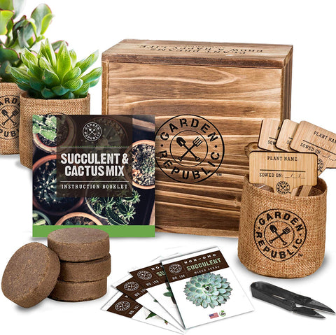 Garden Republic Cacti Grow Kit