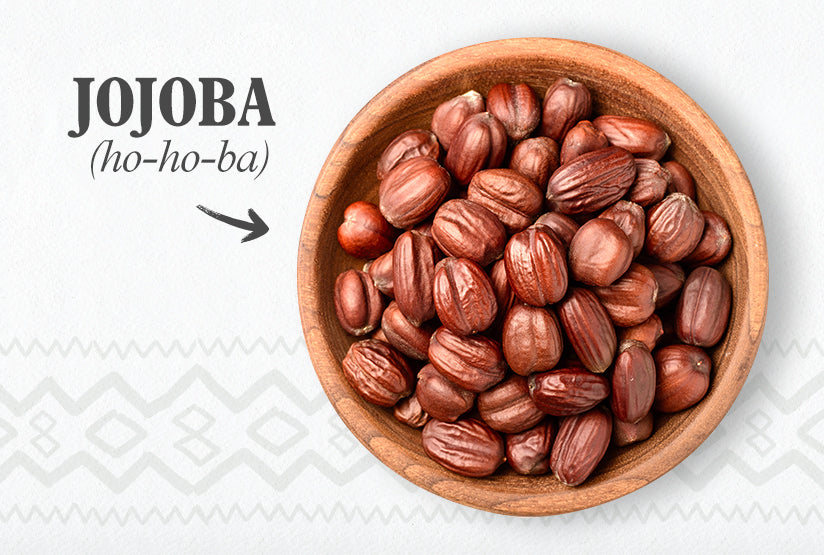 Jojoba Oil (Simmondsia chinensis)