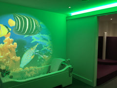 Sensorykraft sensory bathroom
