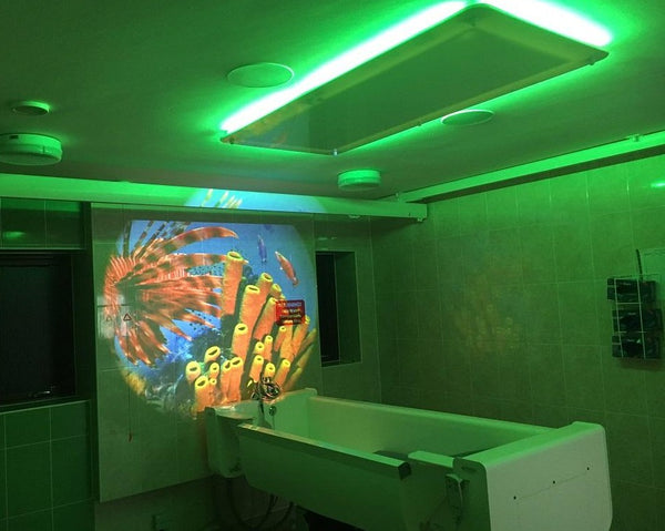 Premium Sensory Bathroom