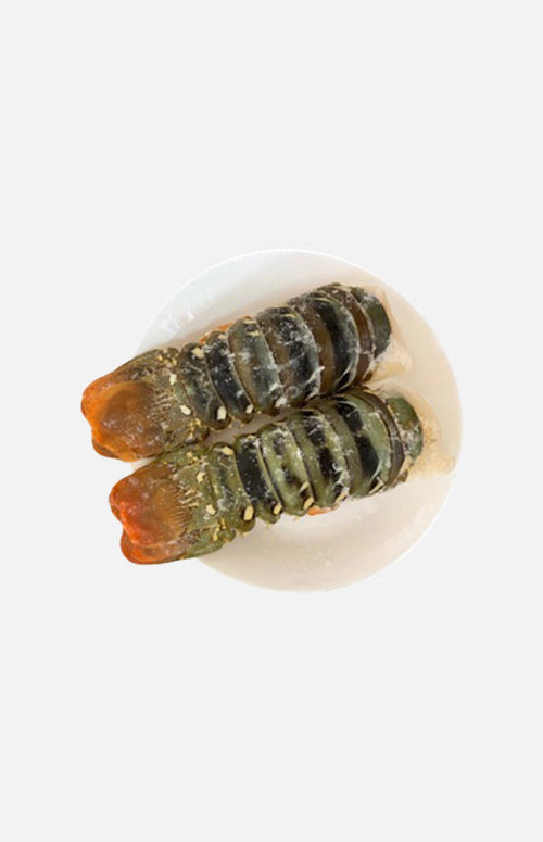Australian Lobster Tails 2pcs(approx 500g)