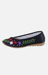 Silk Embroidere Shoe (D)