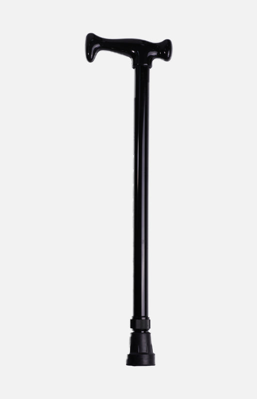 Telescopic Stick FS939L